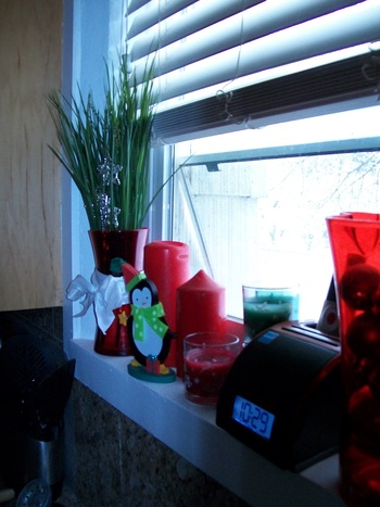 Kitchen Sill 2